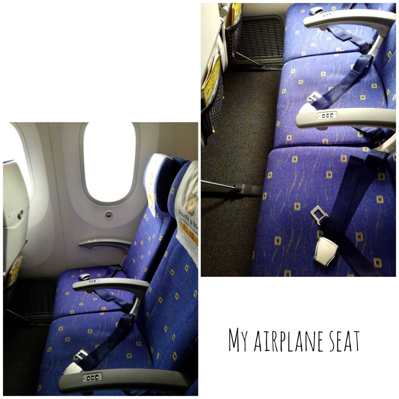 スクート航空機内座席