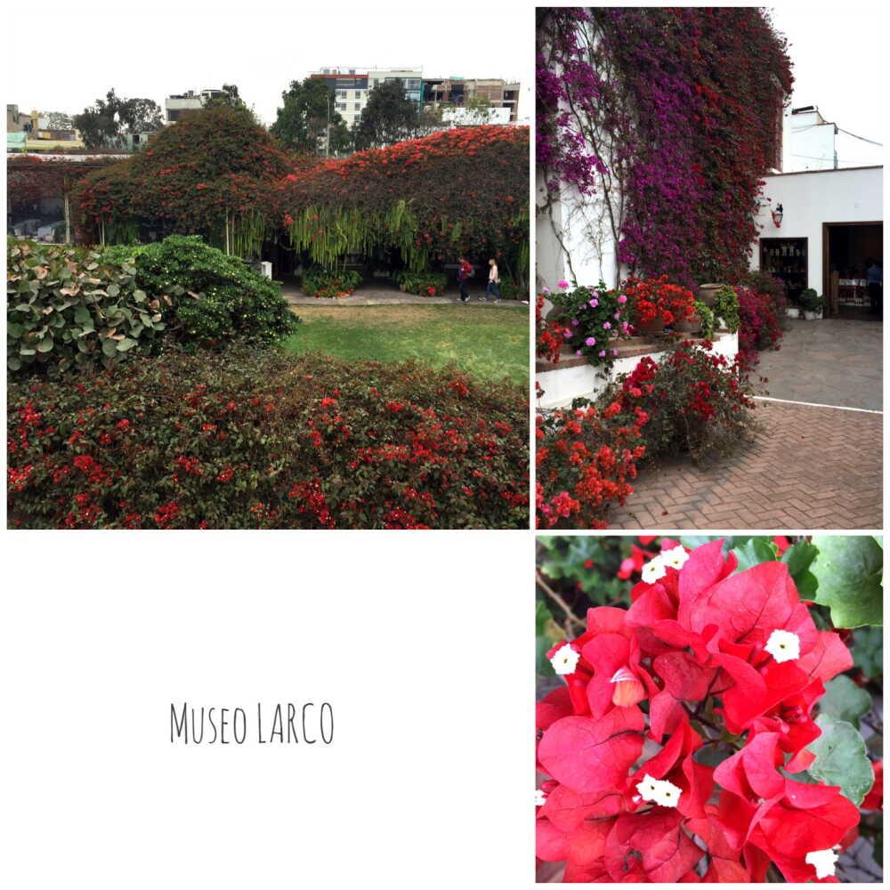 Museo Larco【ラファエル・ラルコ・エレーラ博物館】