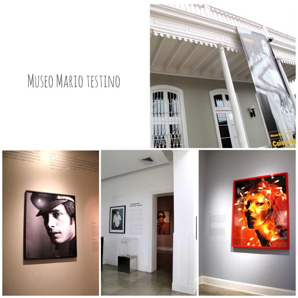 Museo Mario Testino